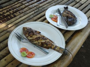 Prepare sea food grilled for lunch time