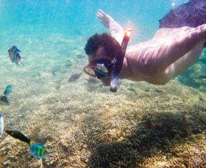 gili-nanggu-lombok13