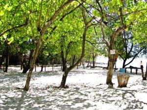 gili-nanggu-lombok6