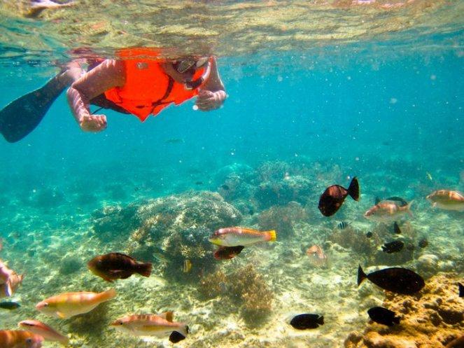 gili-nanggu-lombok9