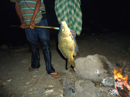 food-fish-rinjani